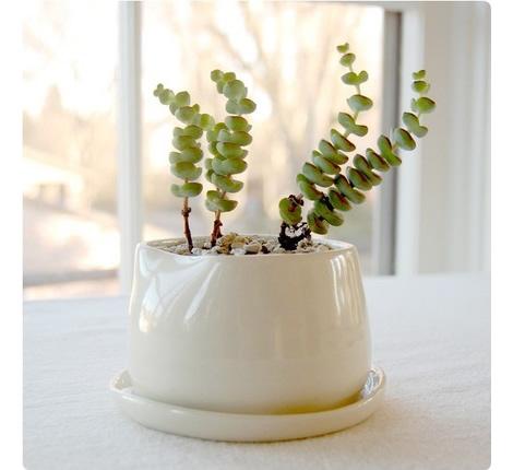 Ceramics1f