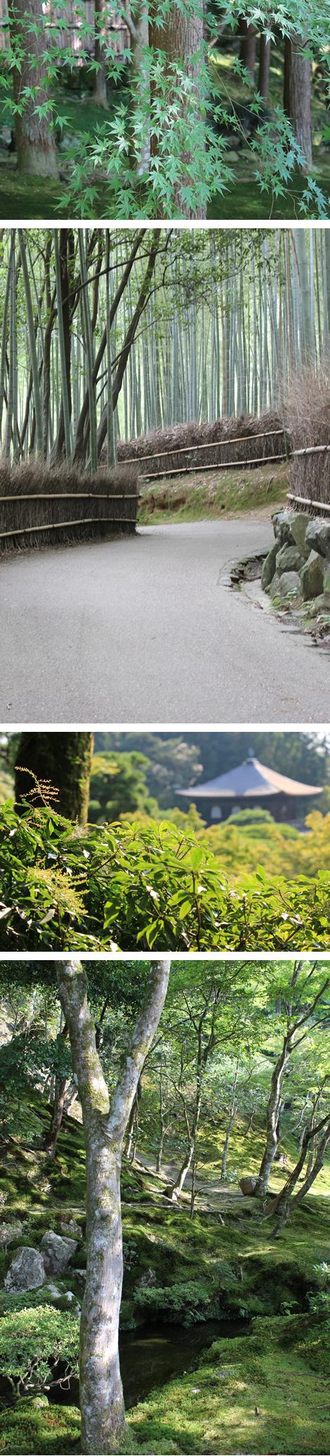 2011_nature_kyoto