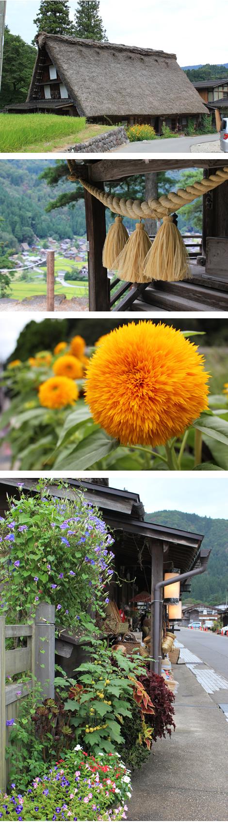 2011_nature_shirakawago